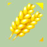 Thumb Crops