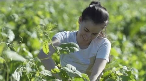 Hay Day Meet the Farmer! E2 Maria
