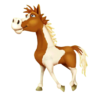 Pinto horse Walking