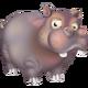 Hippopotame Gris