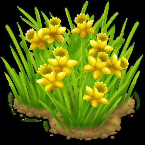 File:Daffodils.png