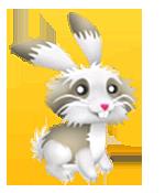 Coniglietto coccoloso