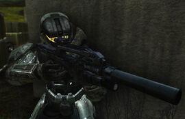 Battle rifle sc