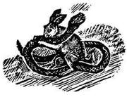 Hester and Pierre McConville's dæmon