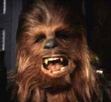 Chewbacca 002