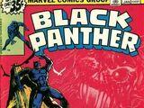 Black Panther 13