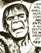 Owen Wallach - Frankenstein