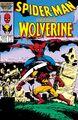 Spider-Man versus Wolverine 1.jpg