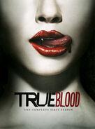 True Blood Season One