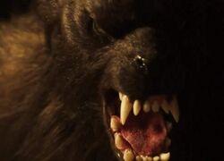 Creepshow - Bad Wolf Down 001
