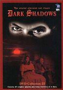 DS DVD 25