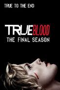 True Blood - Season Seven