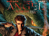 Angel: After the Fall Vol 1