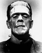 Frankenstein's Monster (Universal Classics) 001