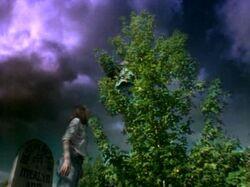 American Gothic 1x2 002