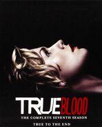 True Blood - The Complete Seventh Season