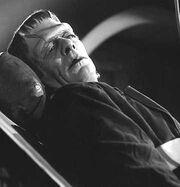 Frankenstein Monster (Glenn Strange) 001