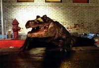 Sewer gator 001
