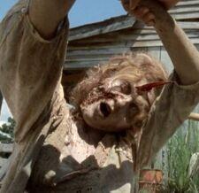 Walking Dead 2x08 003