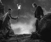 Henry Frankenstein and the Monster 002