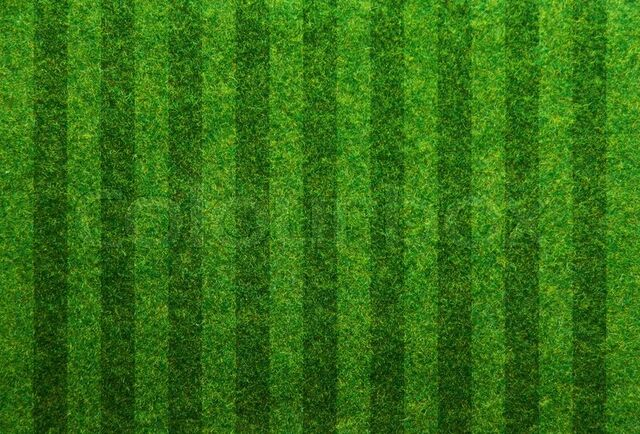 File:9093811-green-grass-soccer-field-background.jpg