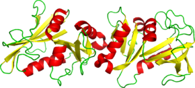 Structure of recombinant human dihydrofolate reductase based on 2DHF
