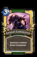 AnimalCompanion1