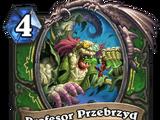 Profesor Przebrzyd