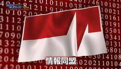 Information Alliance - Flag