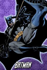 Batman jimlee