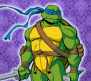Favorite Ninja Turtle