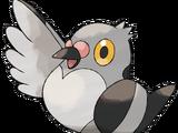 Bird Moses