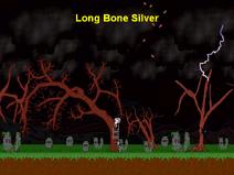 640x480 Long Bone Silver