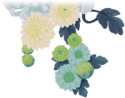 Img flowers