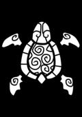 Turtle-hybrid-icon