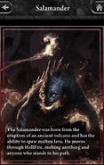 Salamander-Lore