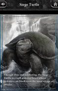 Siege Turtle - Lore