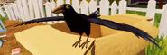 Ворона из Alpha 4