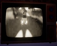 Included realistic TV in alpha 2 basement