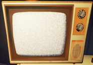 Included realistic TV