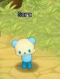 HKO NPC Sora59