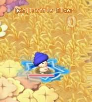 HKO Troffle Elder105