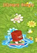 HKO Angry Boxpig010