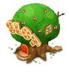 Apple tree slot