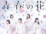 Seishun no Hana / Start Line