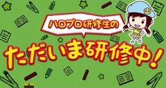 Hello! Pro Kenshuusei no Tadaima Kenshuuchuu!
