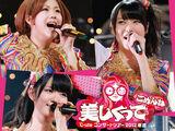 ℃-ute Concert Tour 2012 Haru Natsu ~Utsukushikutte Gomen ne~