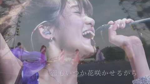 Startline lyric video 佐藤綾乃