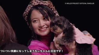 DVD『モーニング娘。'19 カントリー・ガールズ 森戸知沙希バースデーイベント』