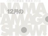 Hello Pro Kenshuusei Happyoukai 2013 ~12gatsu no Nama Tamago Show!~